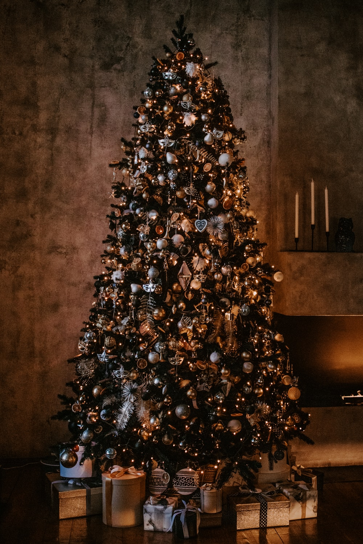 Christmas tree near wall