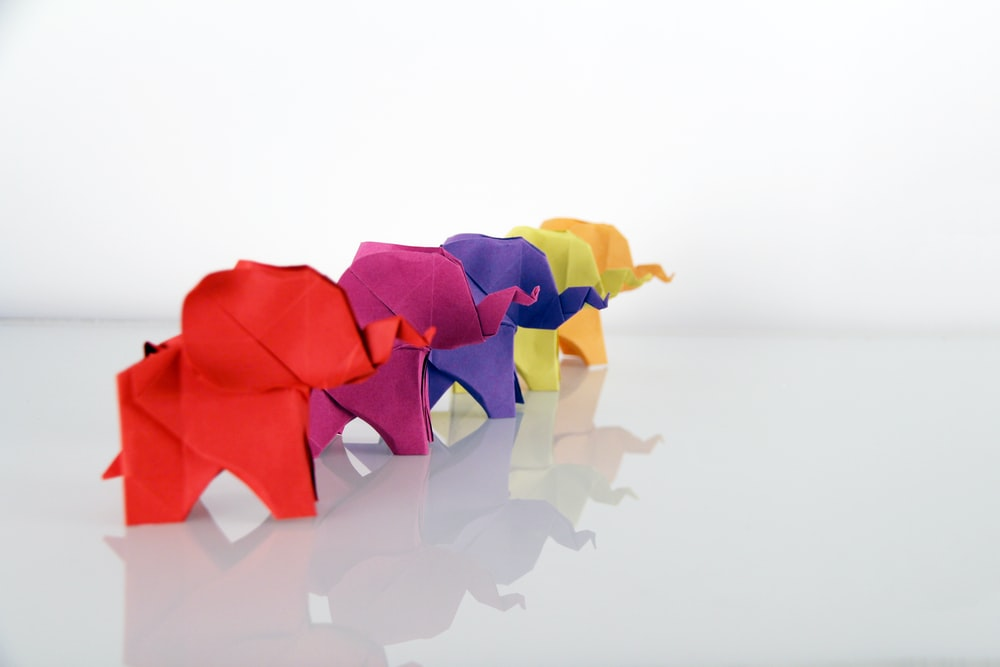 five assorted-color elephant origami