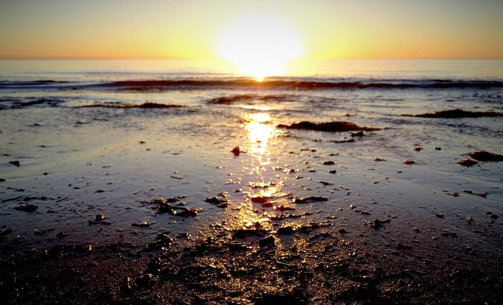 worm's-eye view photo of beach