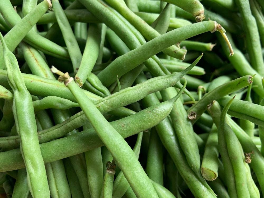 green kentucky beans