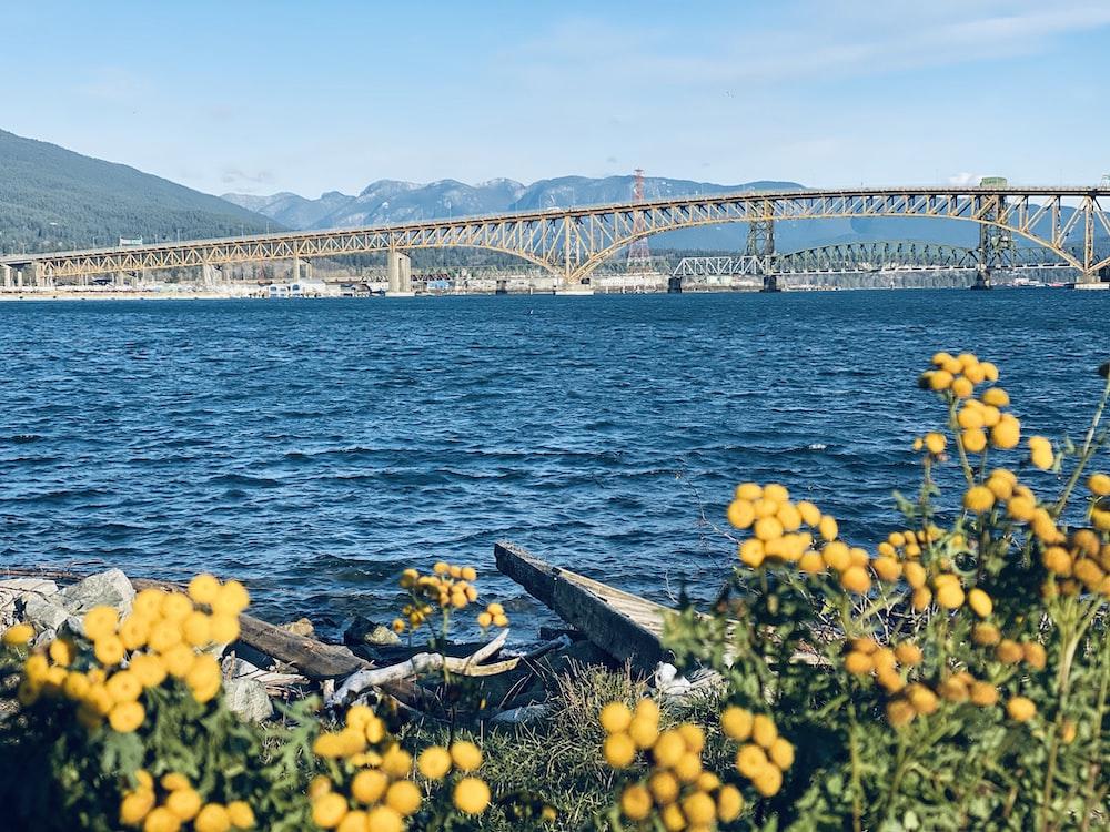 gray metal bridge during daytime