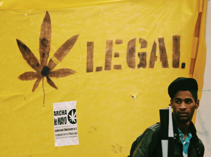 The 2020 Election and the War on Drugs
