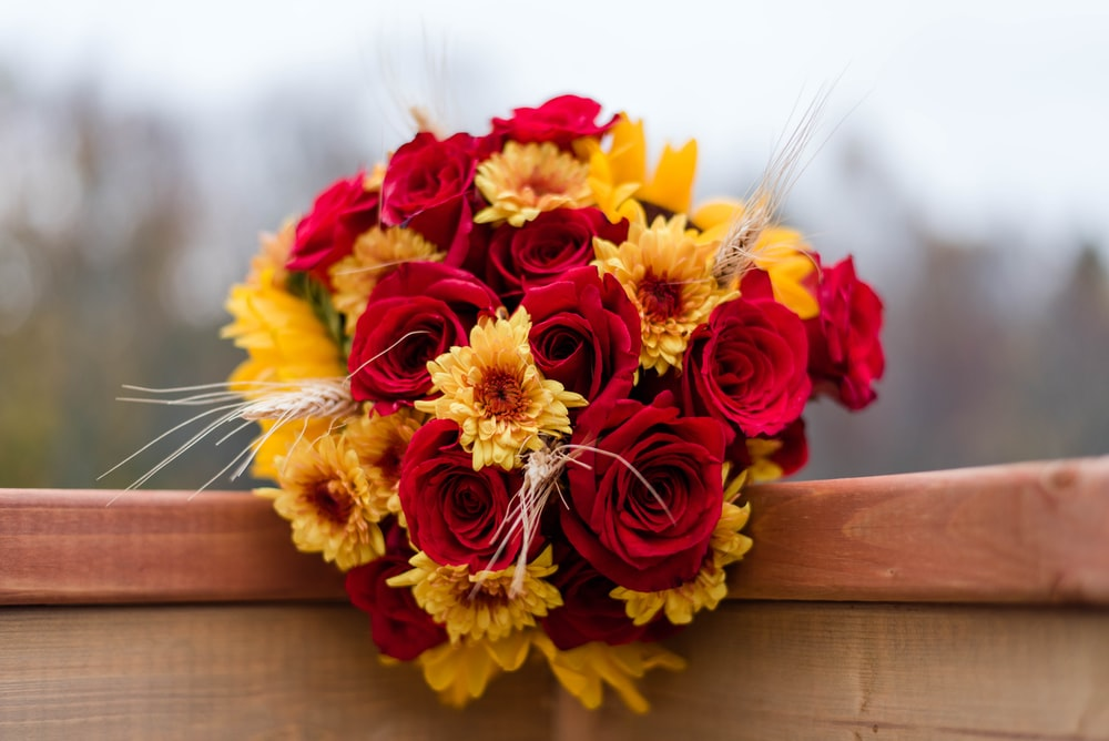 red and yellow petaled flower bouquet