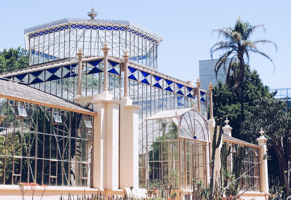 greenhouse during daytime