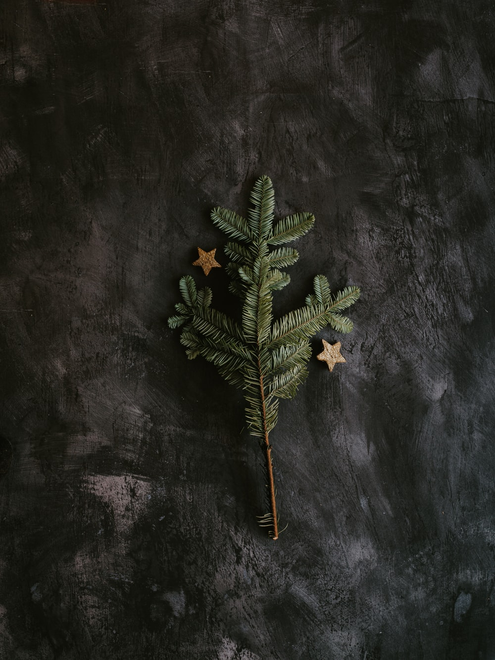 green pine tree on gray surface