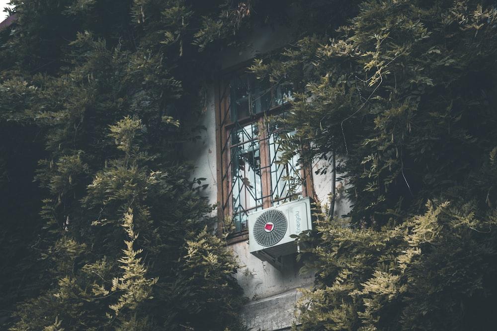 closed windows