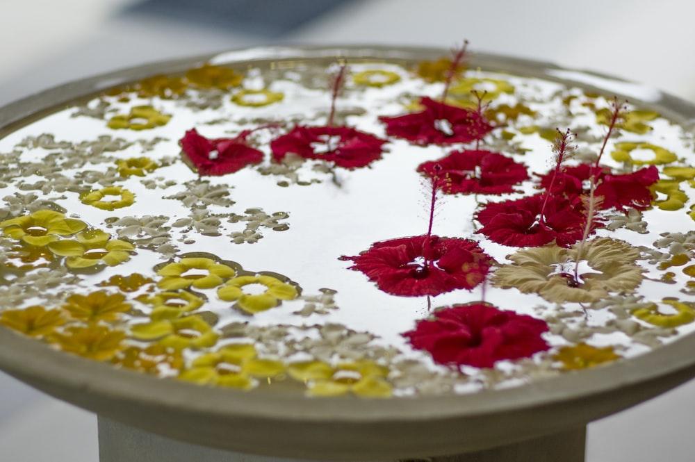 red petaled flowerss