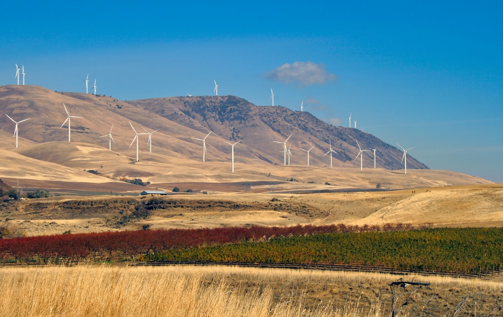 brown and green field with wind mills on mountain