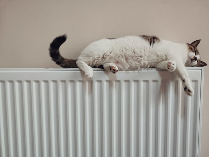 Stop Throwing Away Your Money! 7 Ways to Save on Your Heating Bills This Winter