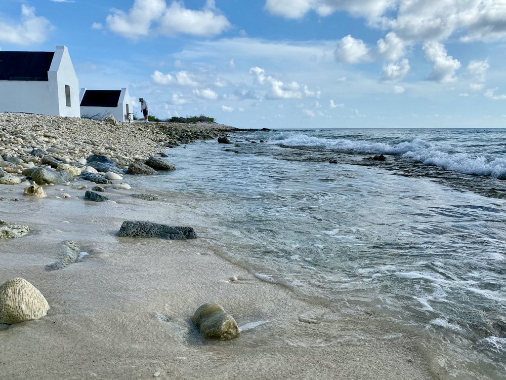 houses on seashore during day
