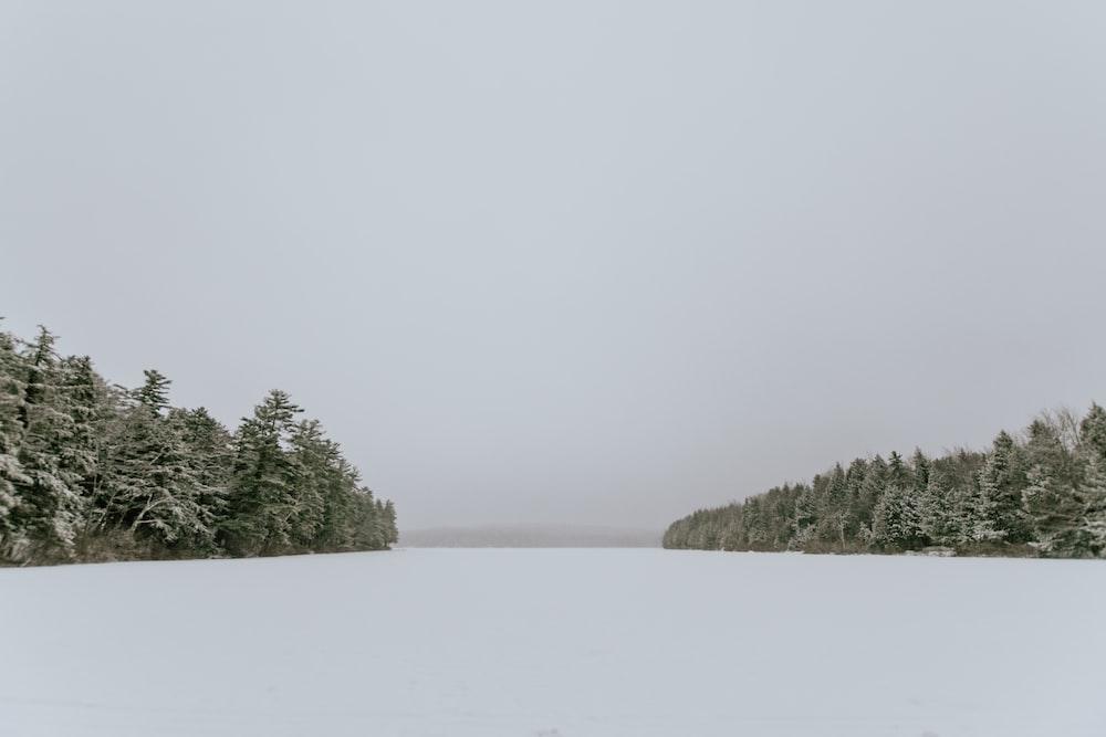 snow covered field in between treeline under white skies