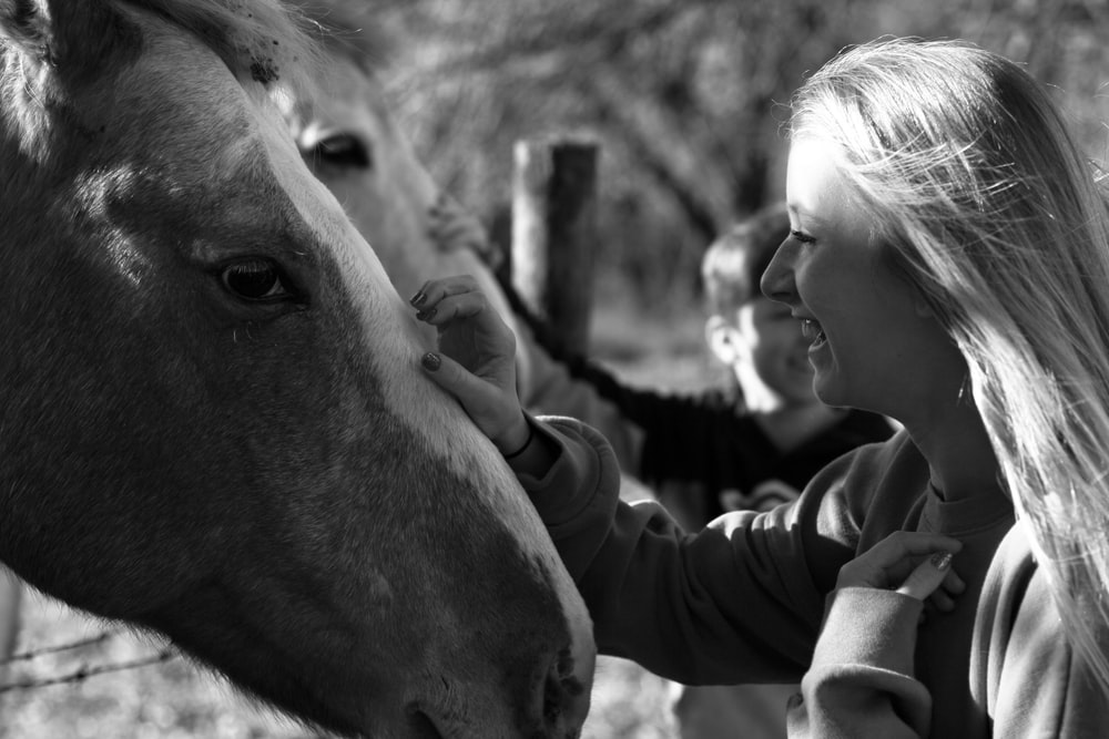 woman holding horse during daytime