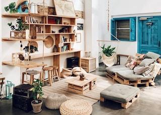 plants and books on shelf