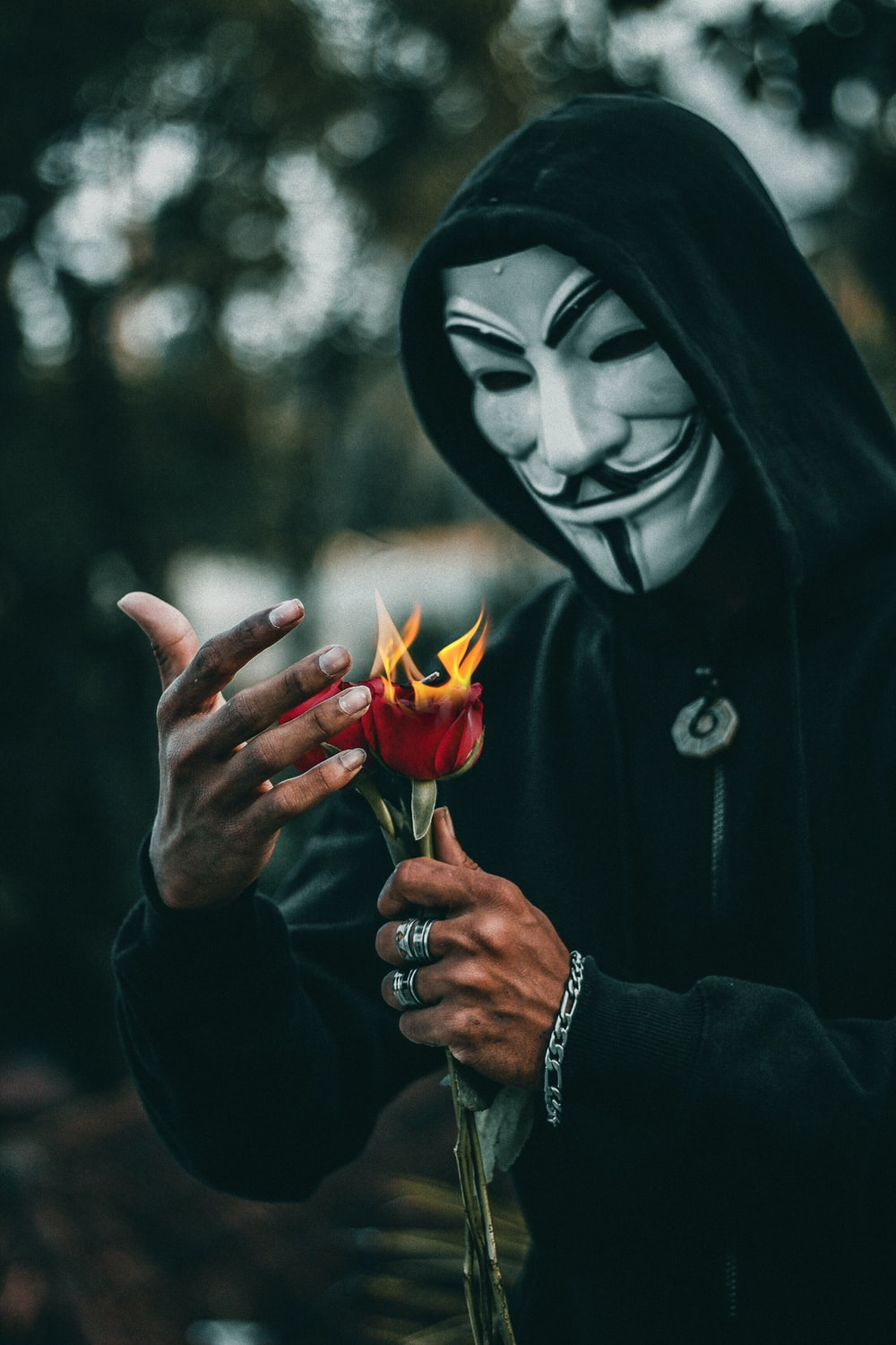 person wearing guy fawkes mask standing while holding burning red rose flower