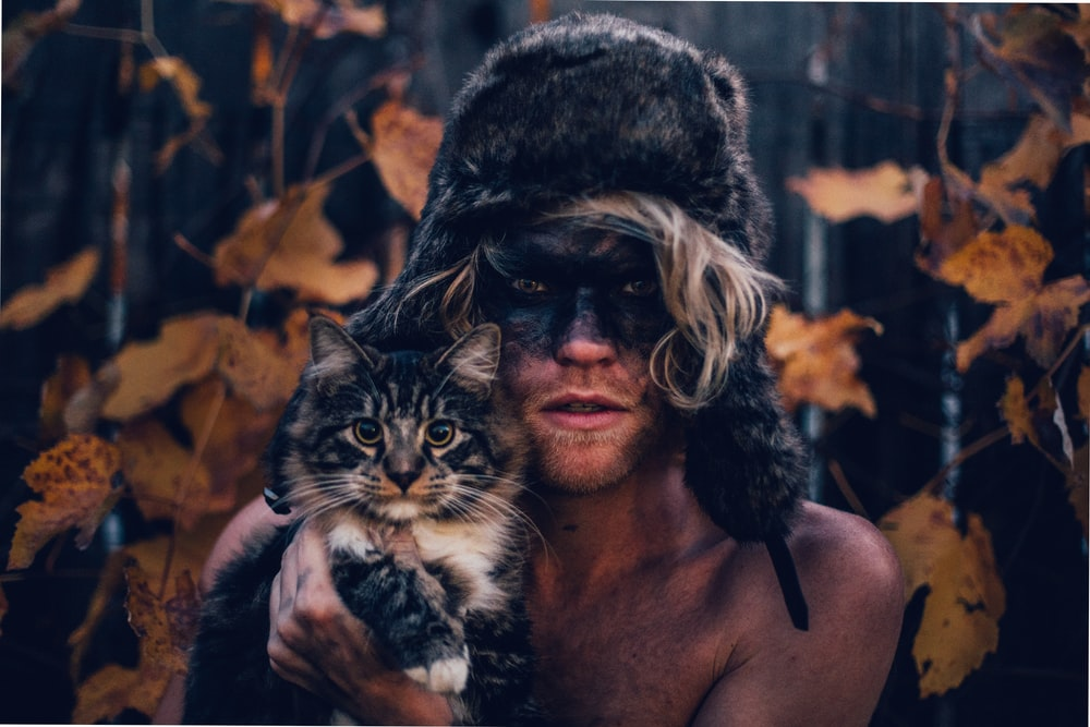 view photography of person holding black and white cat