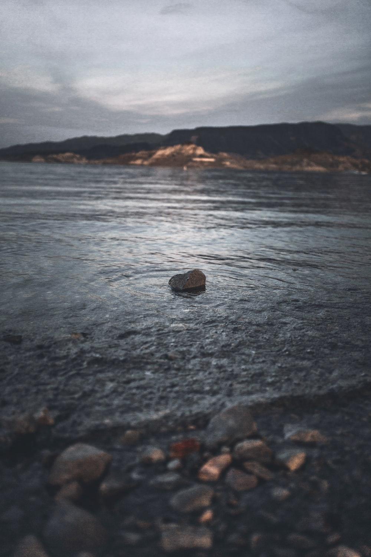 rock on seashore during daytime