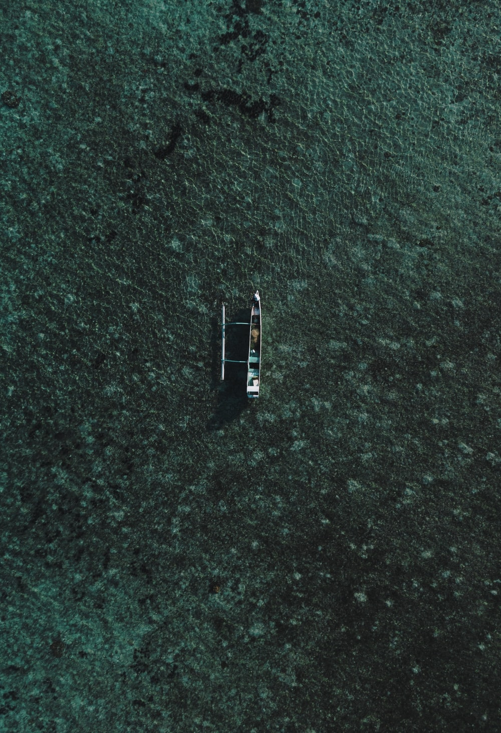 boat on green ground