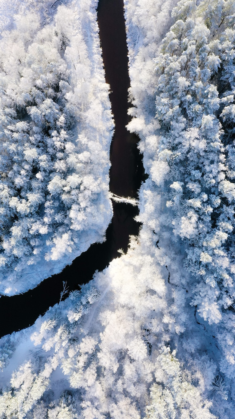 river near snow forest