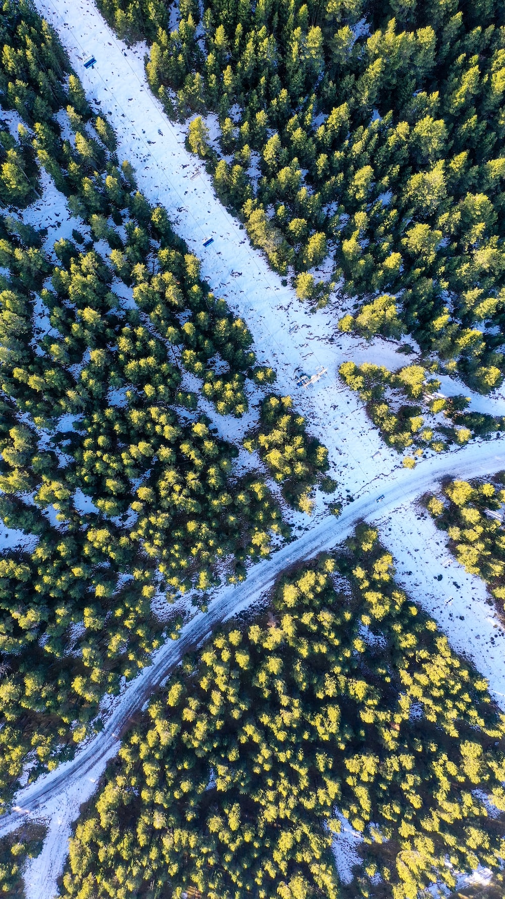 aerial photography of green trees surrounding roads