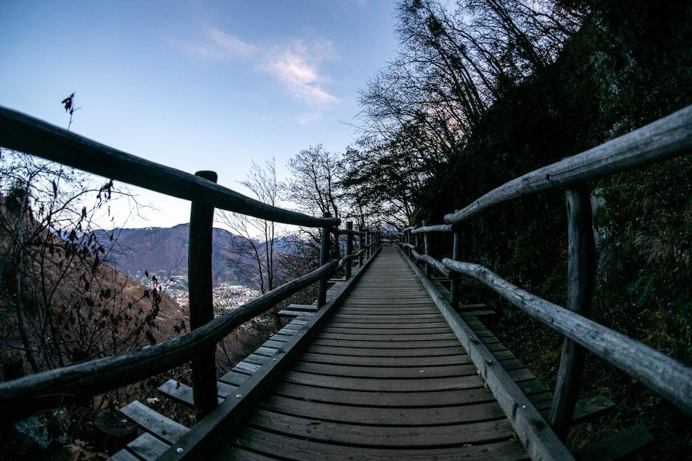 landscape photography of wooden bridge