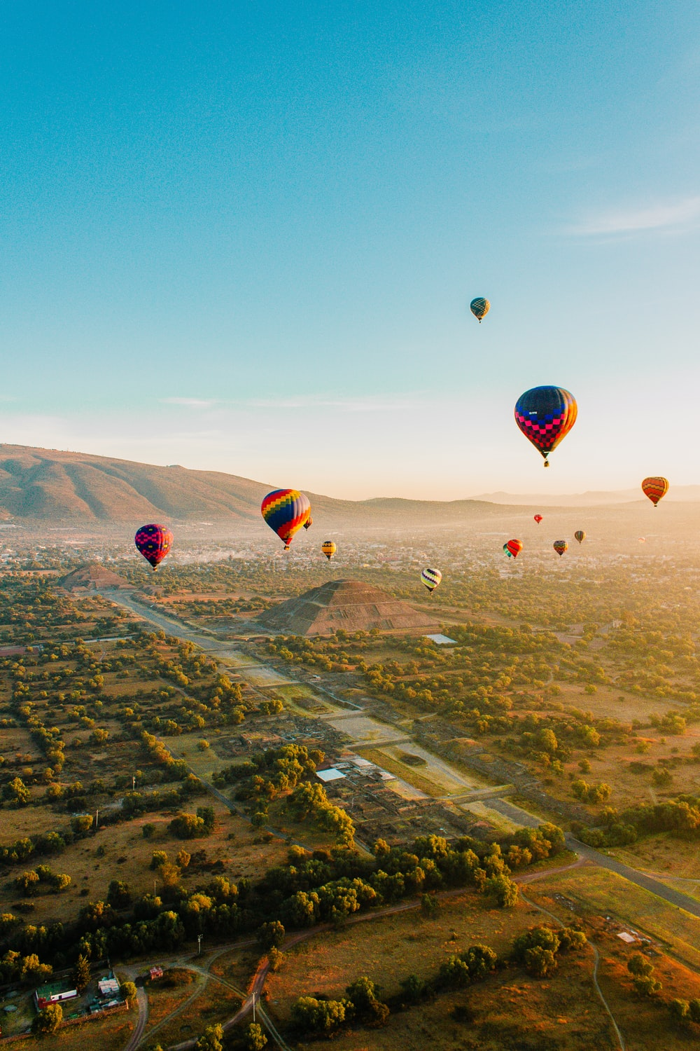 assorted-color air balloons flying over field