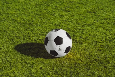 white and black soccer ball on grass field team sport zoom background