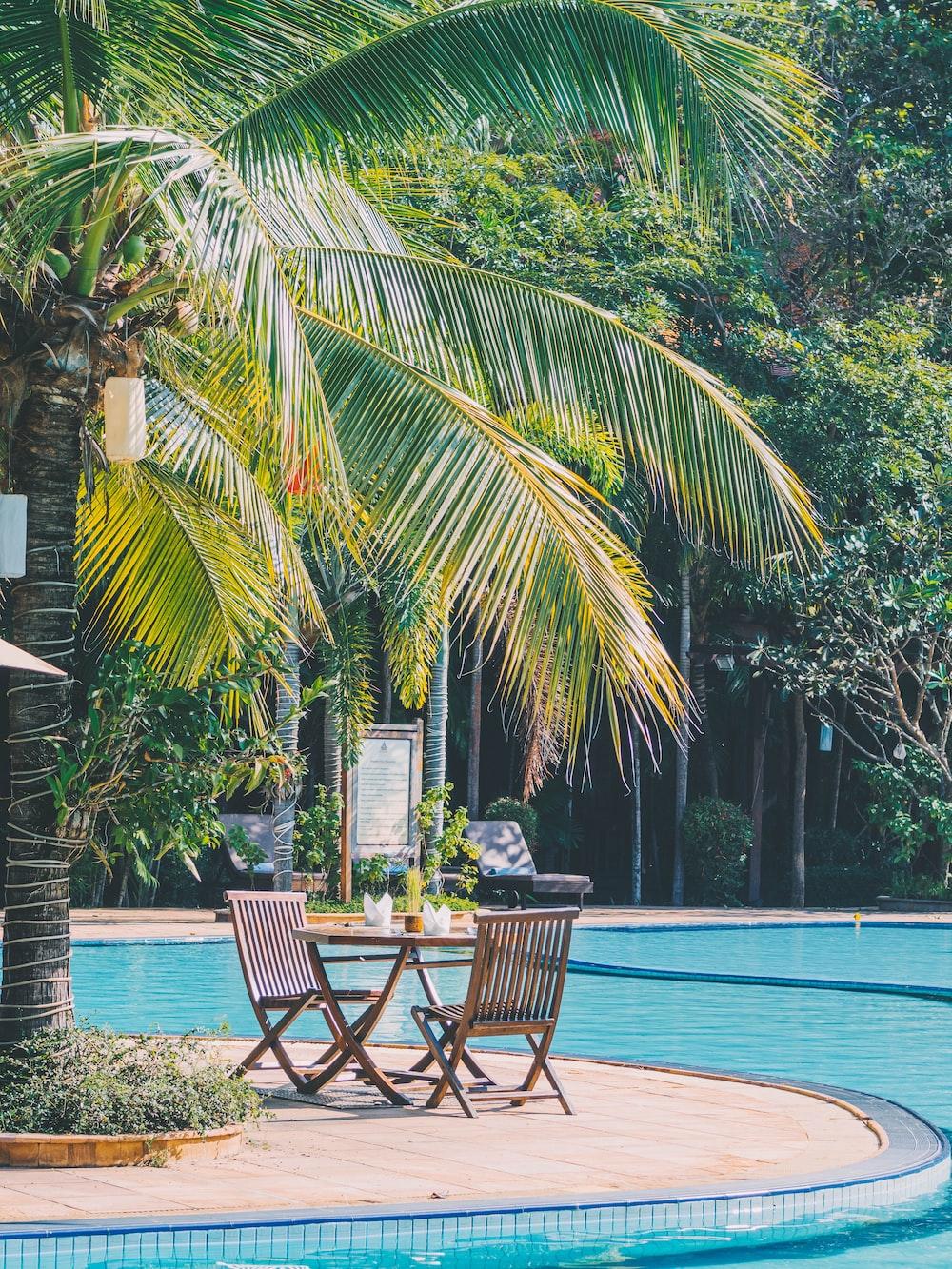 bistro set under coconut tree beside pool side