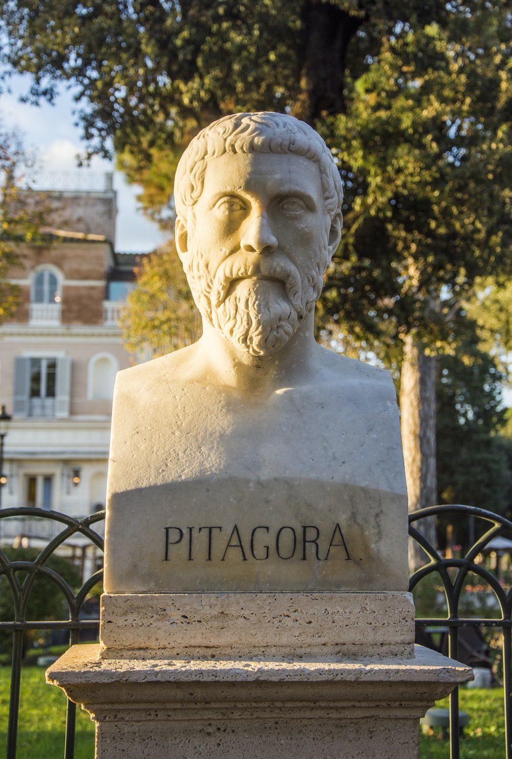 Pitagoria bust