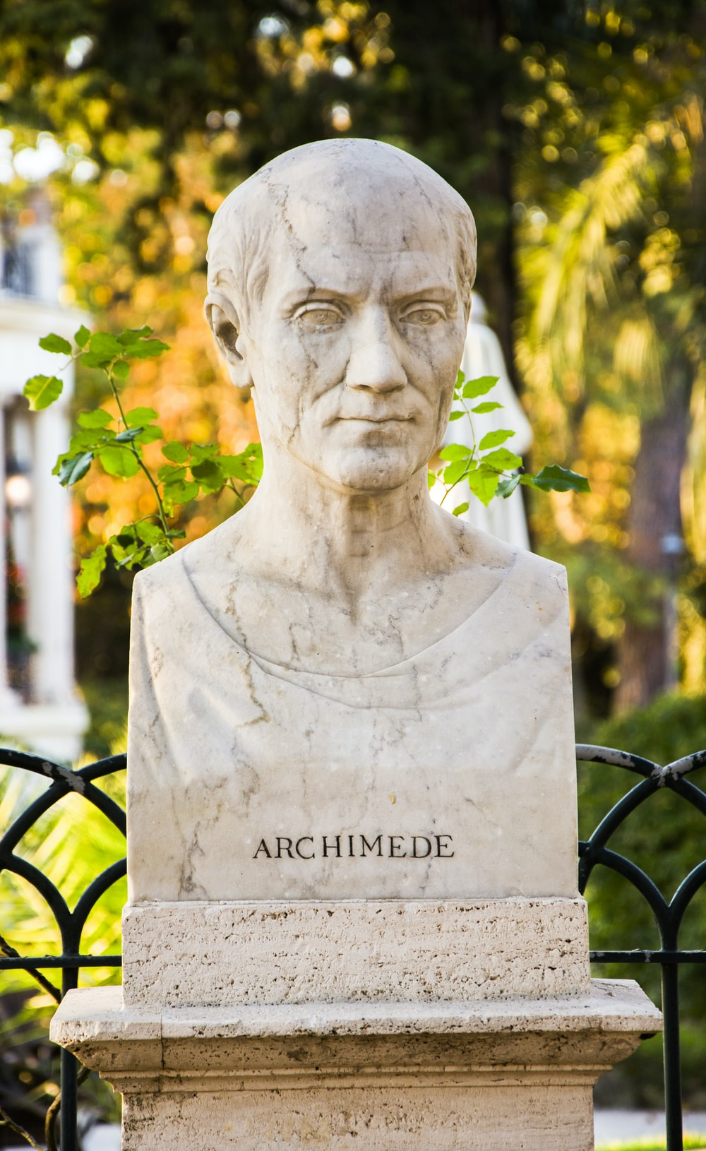 Archimede bust