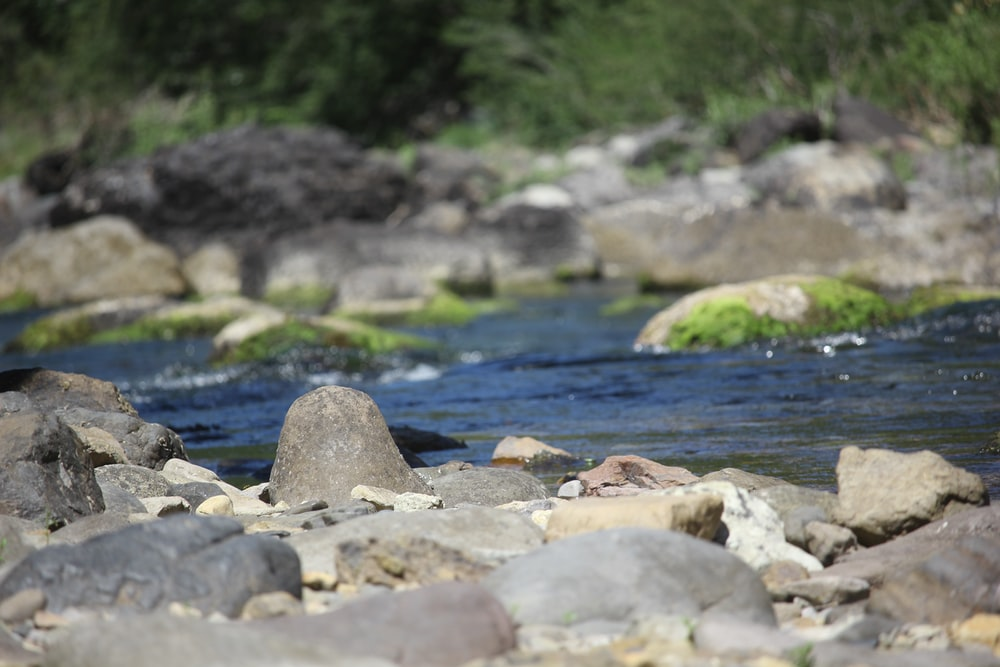 time lapse photo of river with rocks