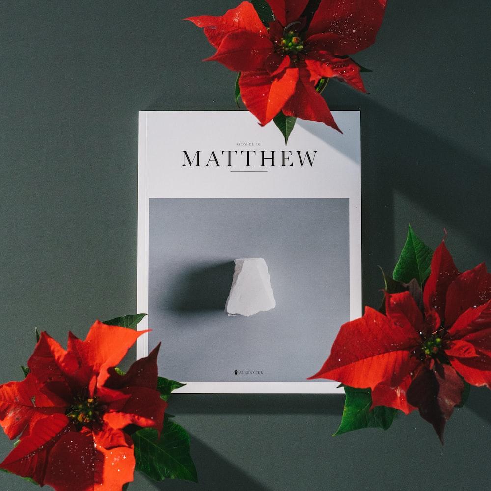 Matthew book near red poinsettia flowers