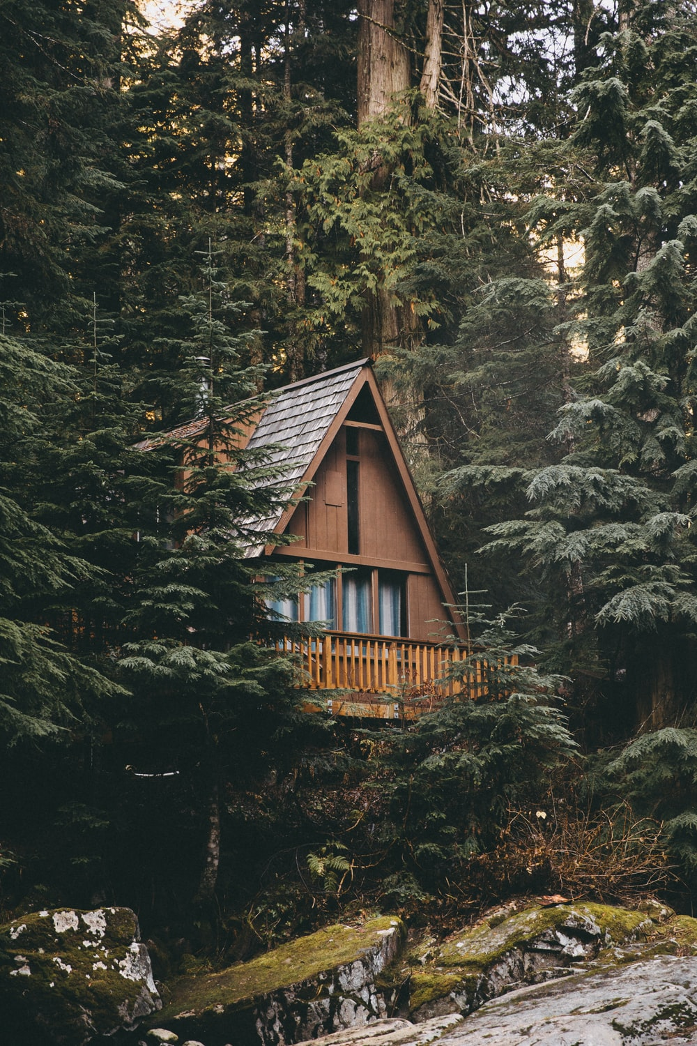 brown and grey wooden cabin surrounded by trees