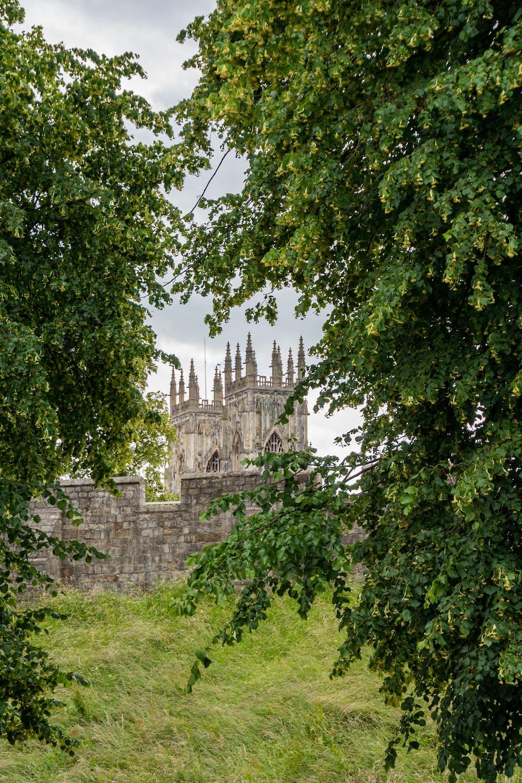 castle near trees