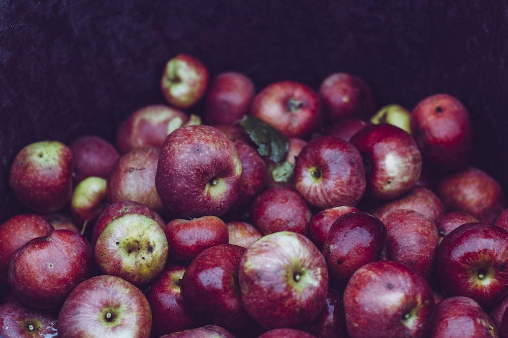 bunch of apple