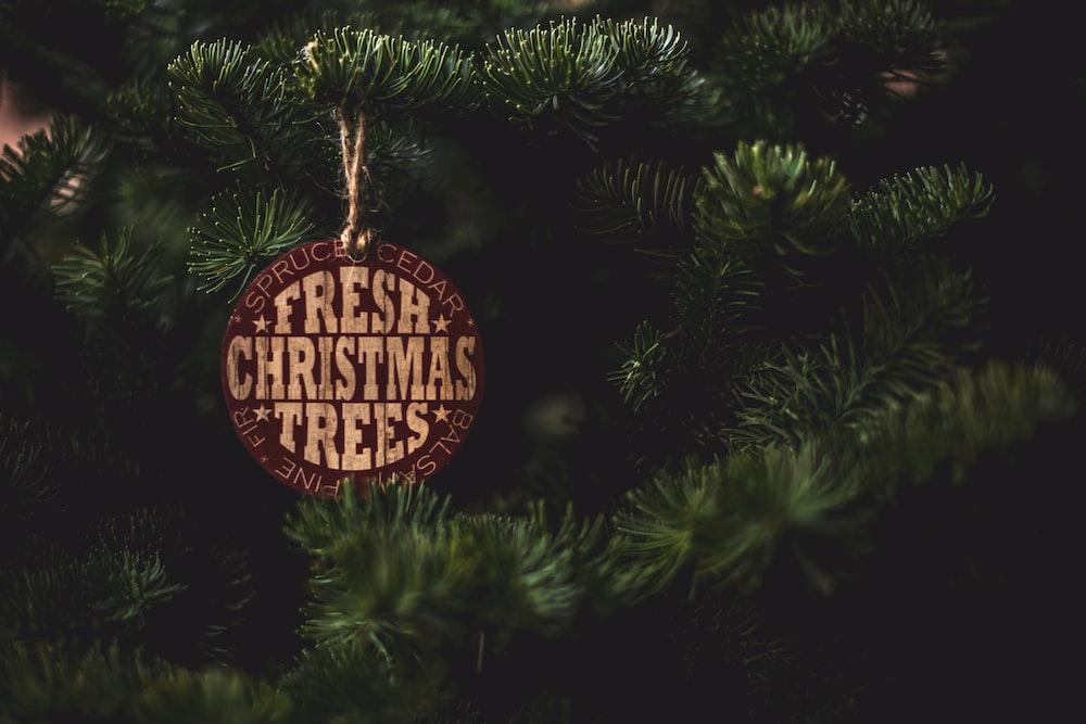 Fresh Christmas Trees label on pine
