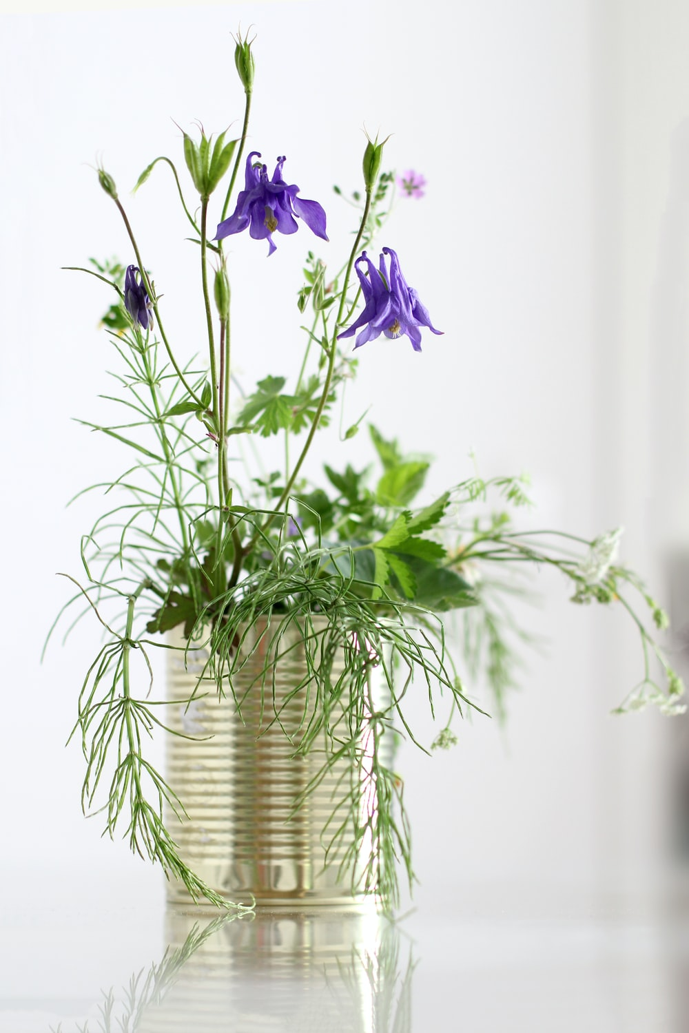purple flowers in silver vase
