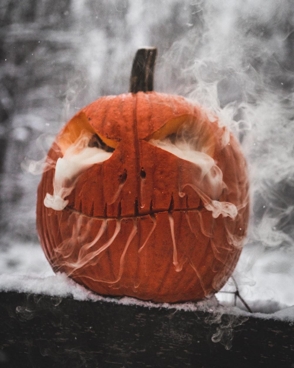 brown pumpkin