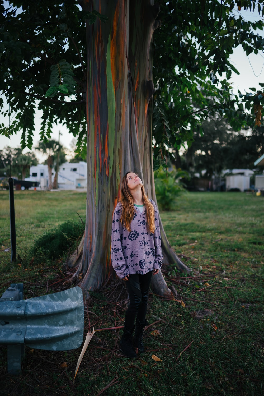 woman standing beside tree during daytime