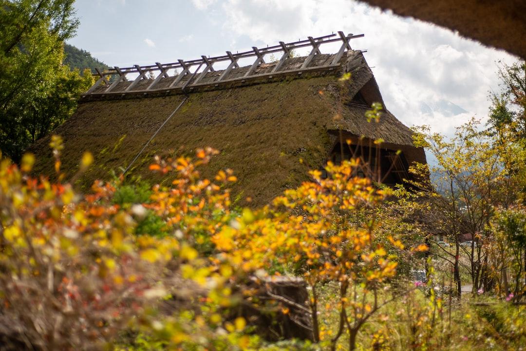 Ancient village next to Mt Fuji