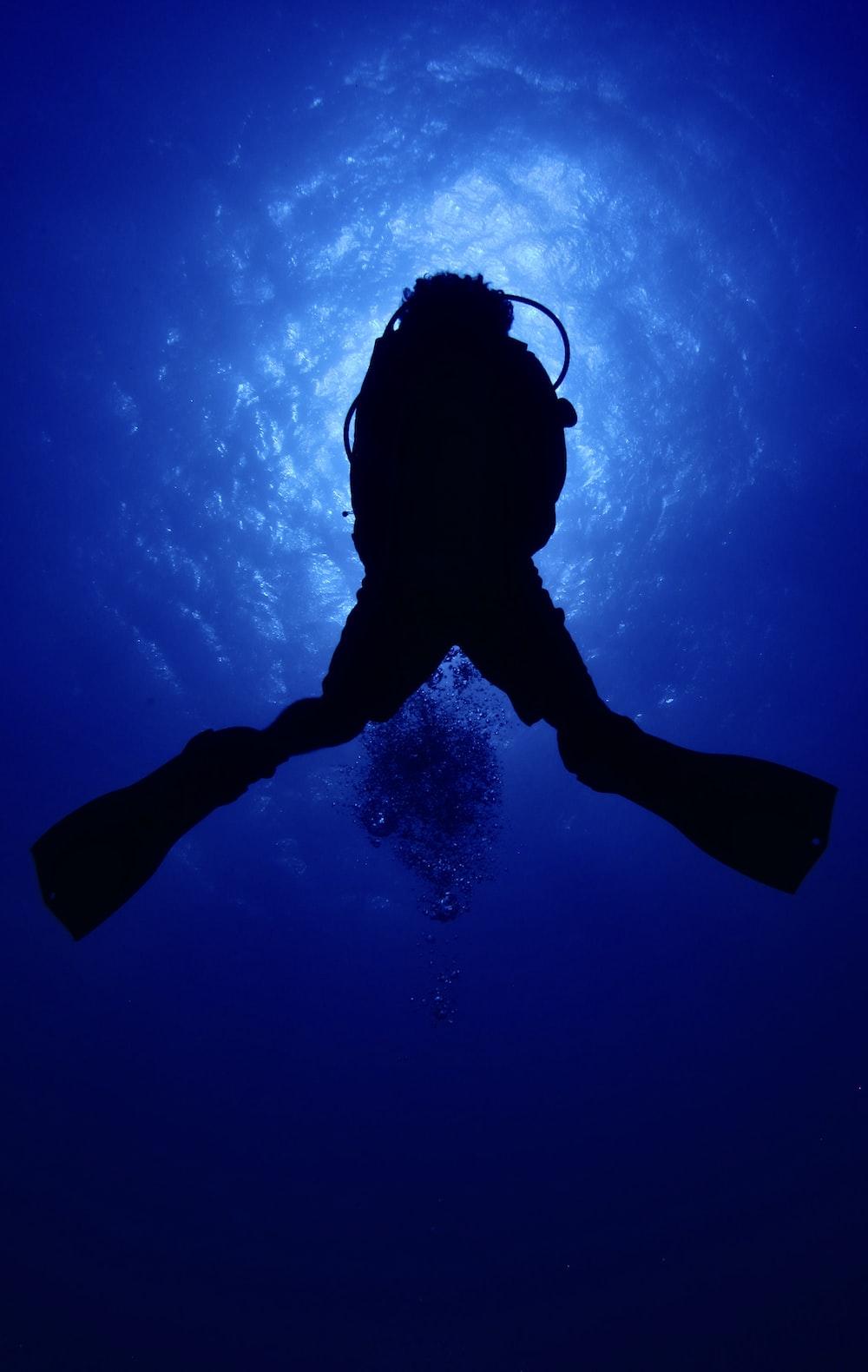 scuba diver in water