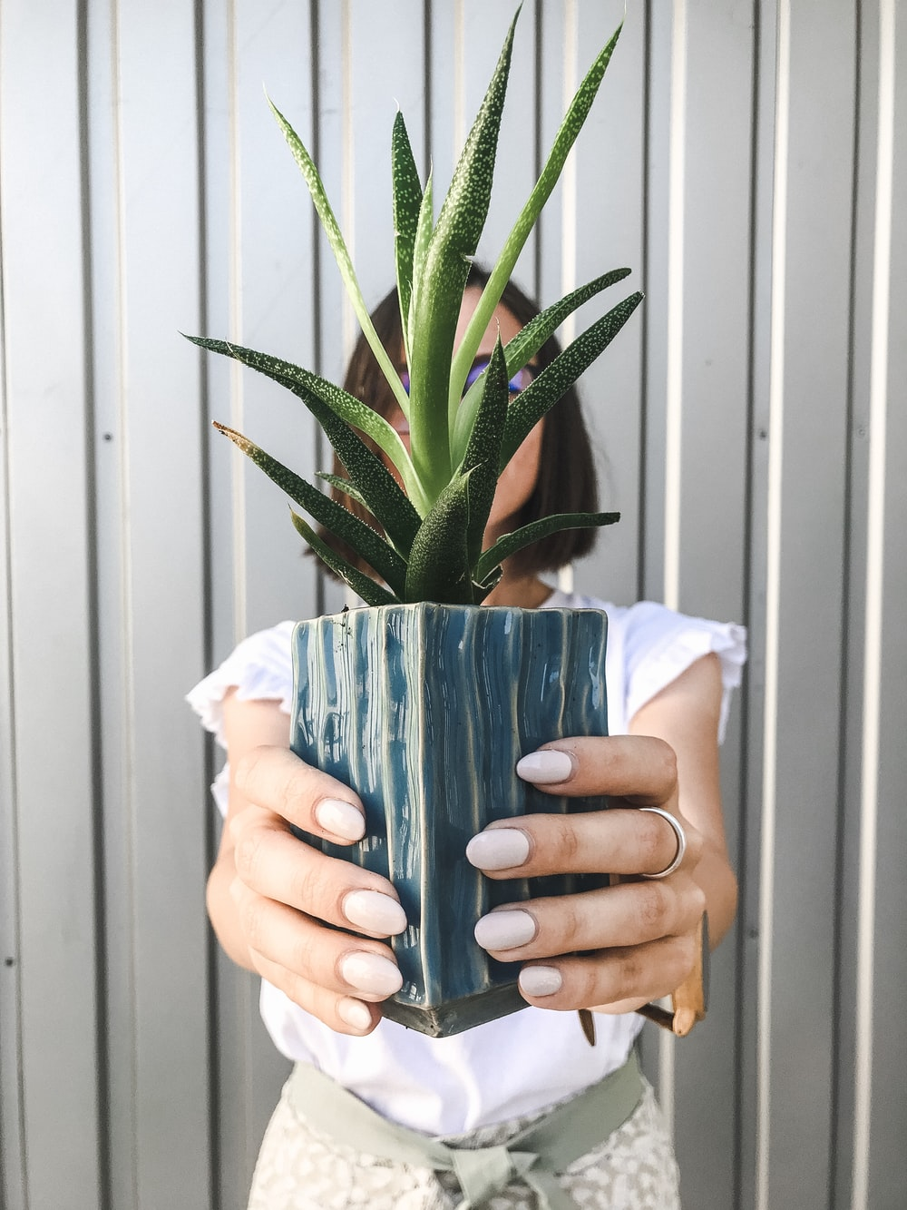 woman holding pot of snake plant