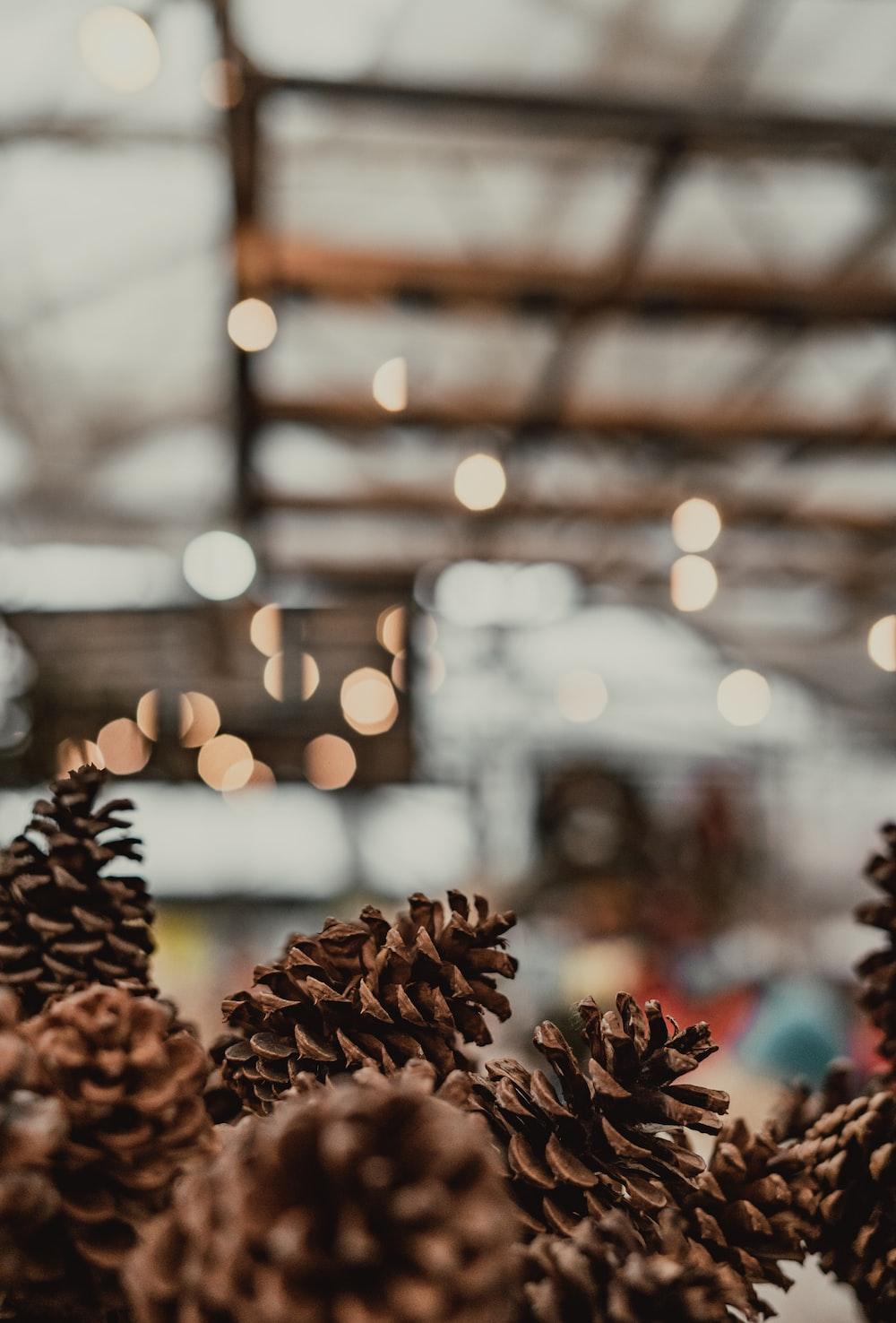 pinecone decors