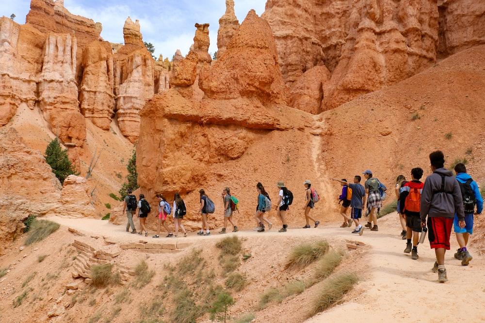 people walking on mountain pathway