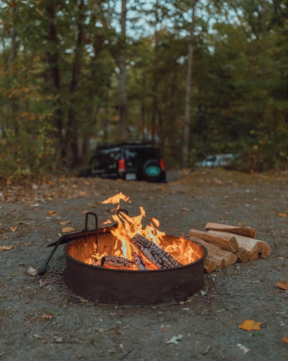 bonfire beside firewood