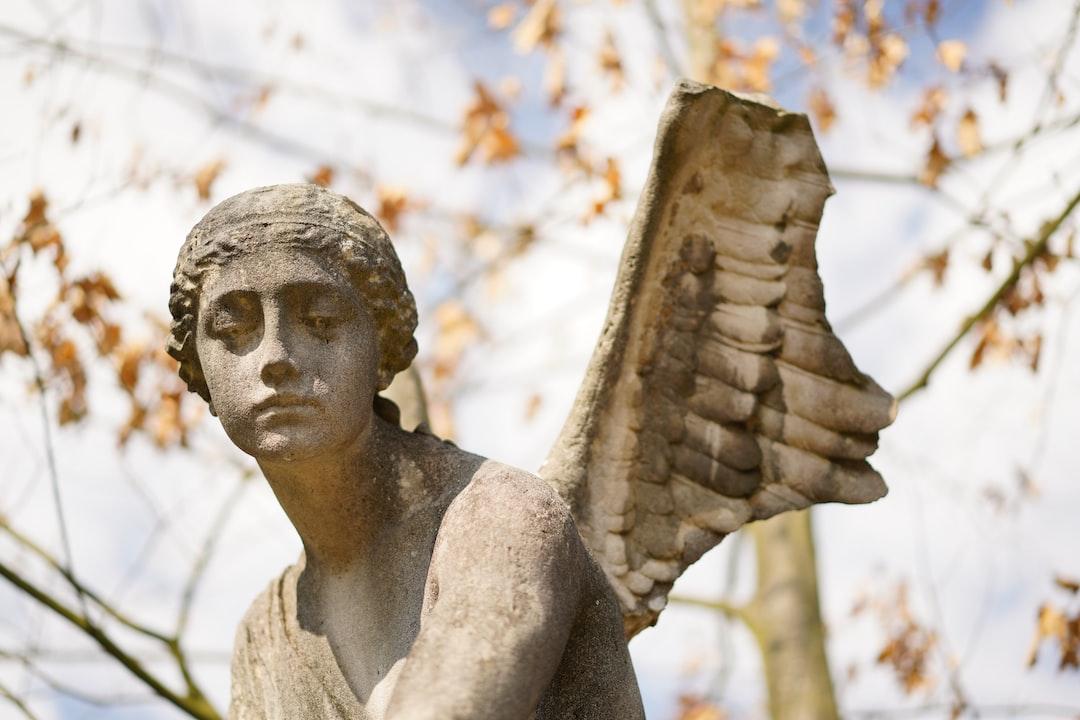 Broken Wings 02