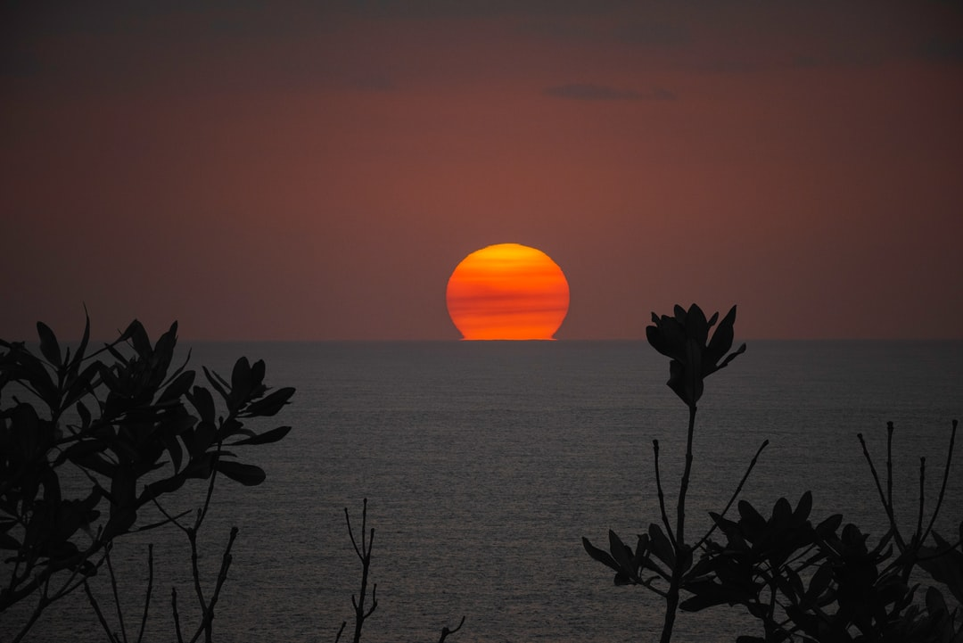 Thick smoke from the East Coast bushfires in Australia have enabled photographing the rising sun as though it was the moon. This photo taken in thick heathland bush at trial Bay NSW shows the sun rising out of the ocean coloured by bush/wild fire smoke.