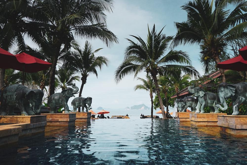 wavy swimming pool during daytime