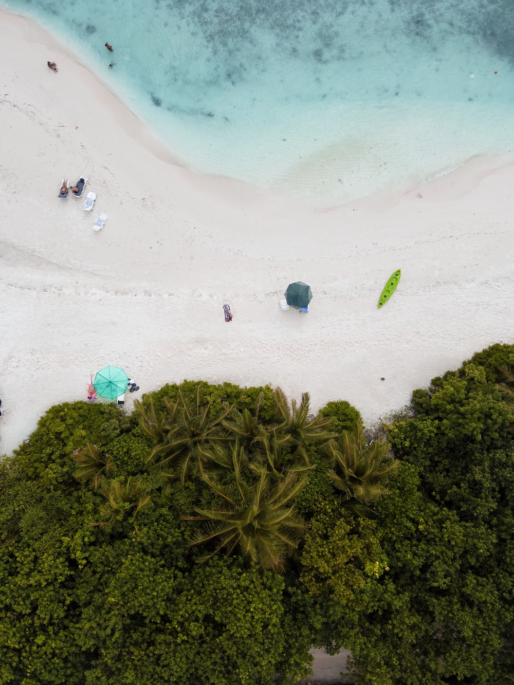 aerial photography of people near seashore during daytime