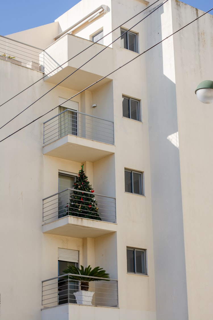 Merry christmas, or just a palm tree?