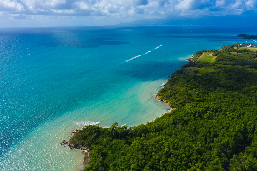 Guadeloupe shore near The Salines beach, Gosier